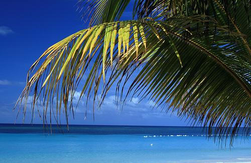 Roatan Beach - Perfect Day !!! 30000 + views and 220 + faves - Thank you - Janusz por janusz l.