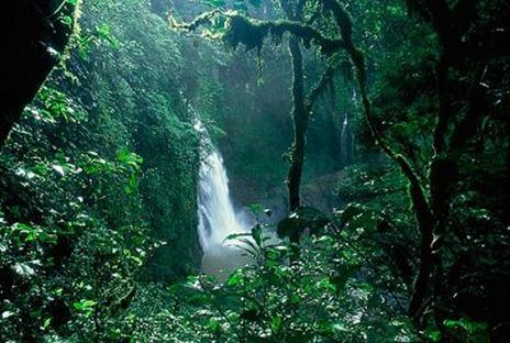Aventura-en-la-selva-del-amazonas_thumb