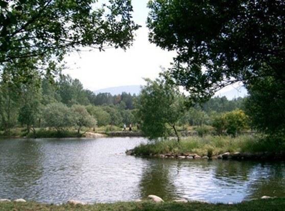 Buscador de lugares aptos para el baño en España de la red Náyade. Descubre en qué ríos, embalse, playas o piscinas naturales te puedes bañar.