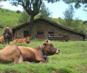 Casas rurales baratas| entre 10 y 20 € persona/noche