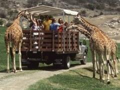 5 Mejores zoos del mundo