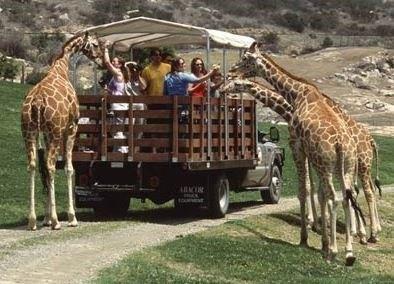 San-diego-zoo-tour.jpg