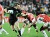 Más sobre el mundial de Rugby