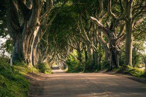 Destino juego tronos irlanda