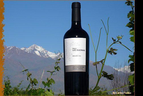 nuestros_vinos.jpg