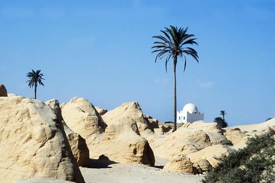 tunez-1.jpg