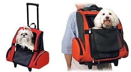 hoteles-perros-mochilas.jpg