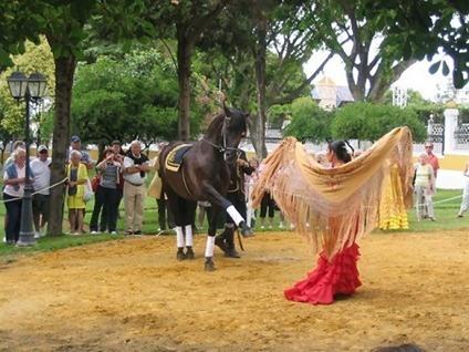 caballos y flamenco