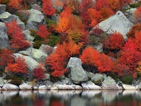 Parque natural La Laguna Negra en Soria